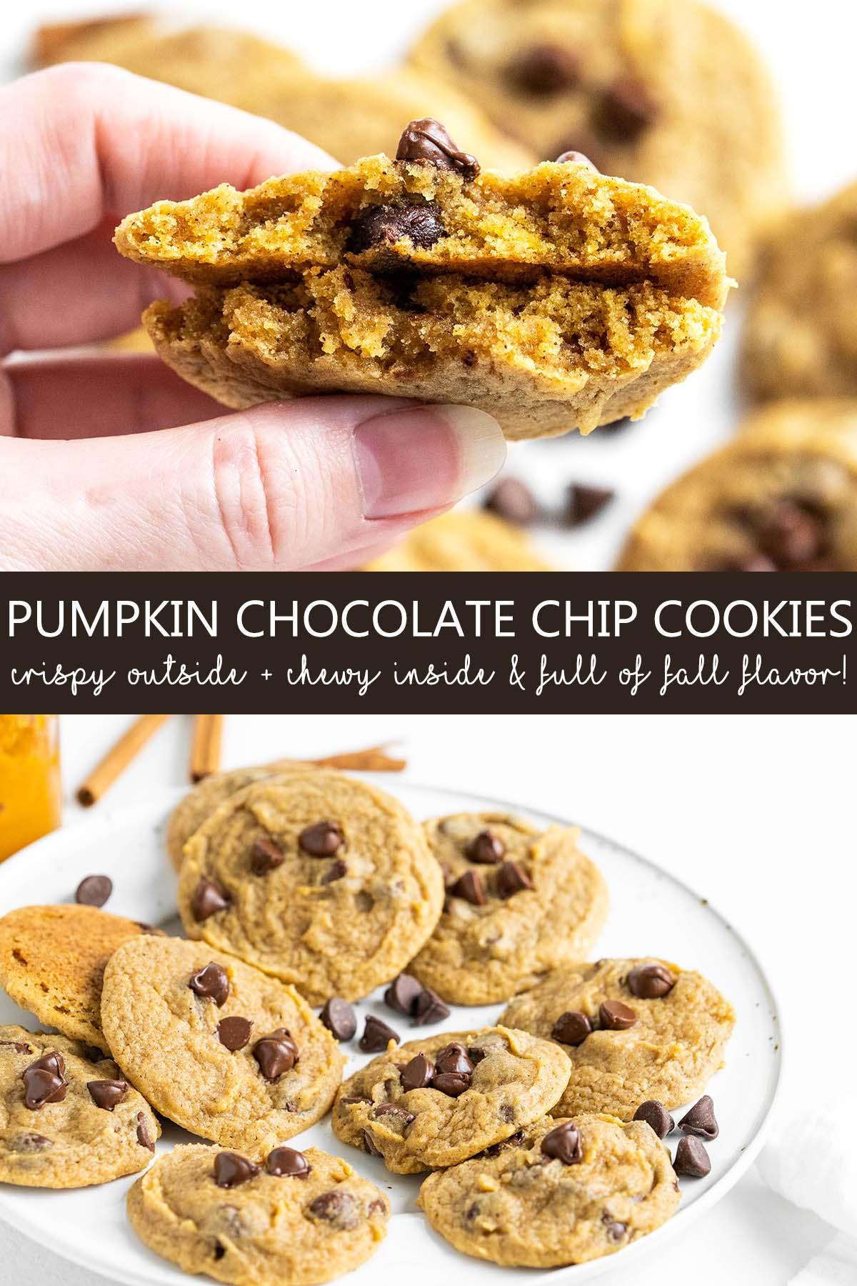 pumpkin chocolate chip cookies recipe pin