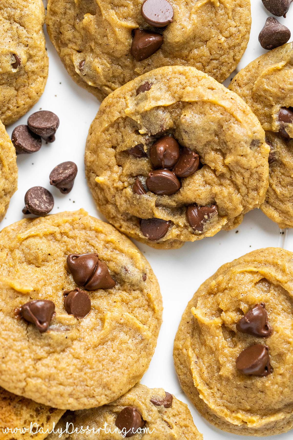 easy pumpkin chocolate cookies